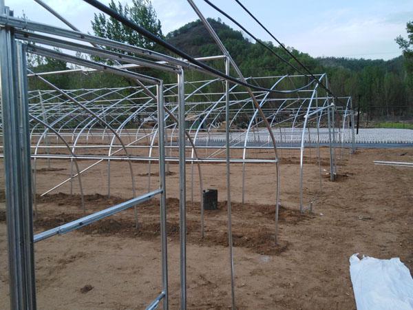 养殖大棚安装现场